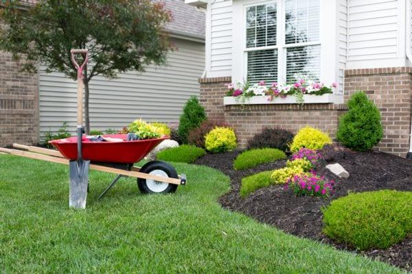 Tips for Home Landscape Care & Maintenance